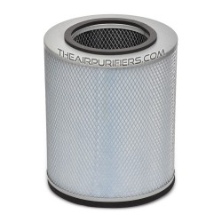 Austin Air Allergy Machine Junior HEPA and Carbon Replacement Filter FR205