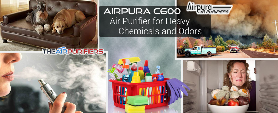 AirPura C600 Heavy Chemical and Odor Abatement Air Purifier at TheAirPurifiers.com