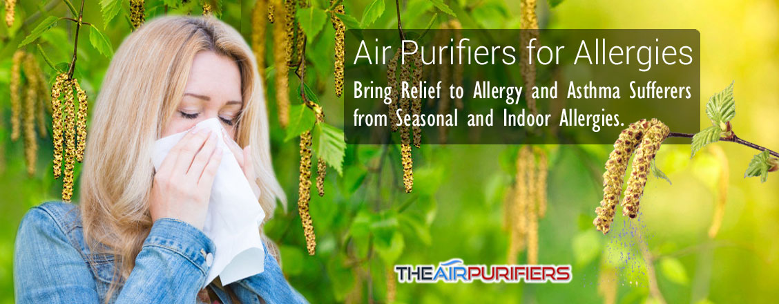 Air Purifiers for Allergies at TheAirPurifiers.com