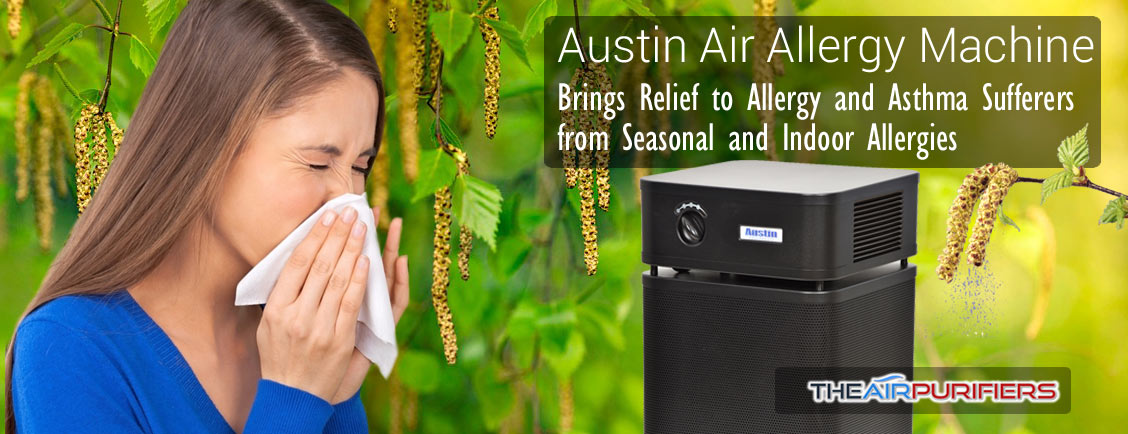 Austin Air Allergy Machine HM405 HEPA Air Purifier TheAirPurifiers.com